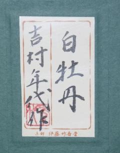 吉村年代 白牡丹