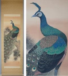 荊木三養 老松孔雀