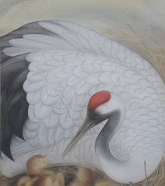 梅村素渓 巣籠