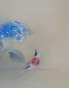 昆野赤鳥 八仙花