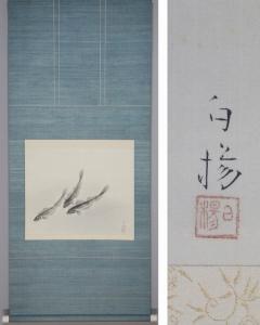 井上白楊 蝦虎魚 (ハゼ・沙魚)