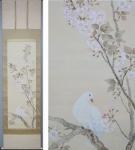 「吉田登穀 櫻花白鳩」春の掛け軸を追加致しました
