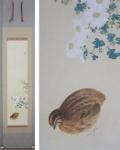 「渡辺幾春 白菊」秋の掛け軸を追加致しました